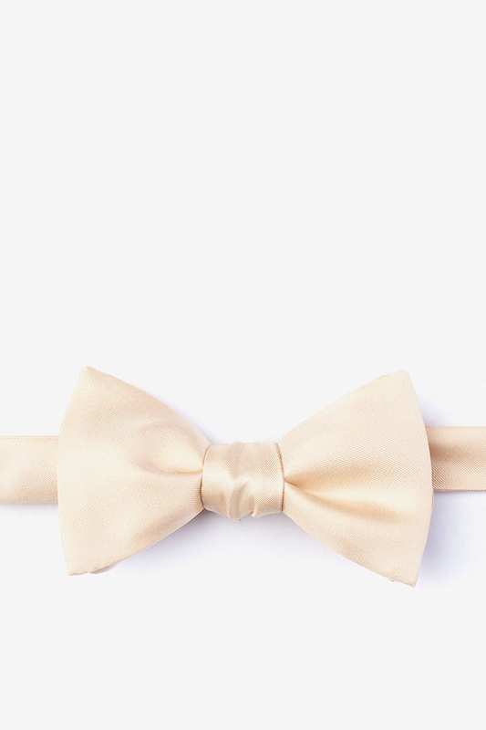 Champagne Self-Tie Bow Tie Photo (0)