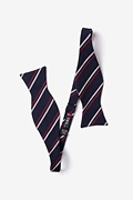 Beasley Navy Blue Self-Tie Bow Tie Photo (1)