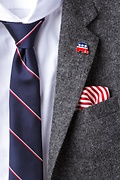 Republican Elephant Red Lapel Pin Photo (1)