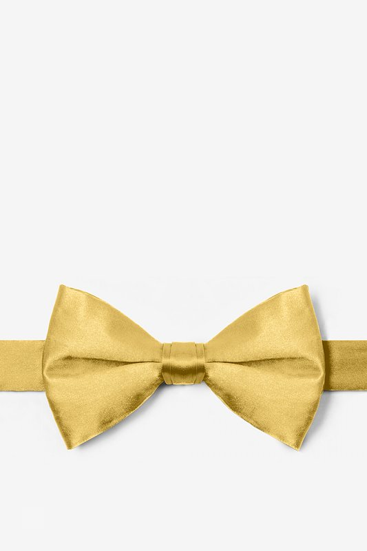 Rich Gold Pre-Tied Bow Tie Photo (0)