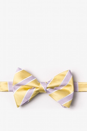 _Jefferson Stripe Yellow Pre-Tied Bow Tie_