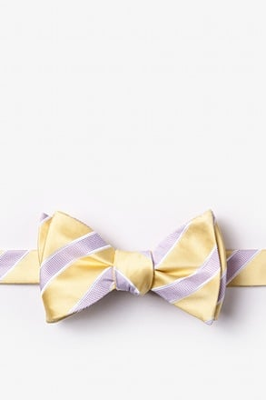 _Jefferson Stripe Yellow Self-Tie Bow Tie_